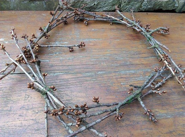 První vrstva větviček vytvoří dolní základnu hnízda.