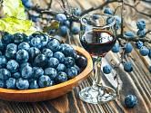 trnkové víno