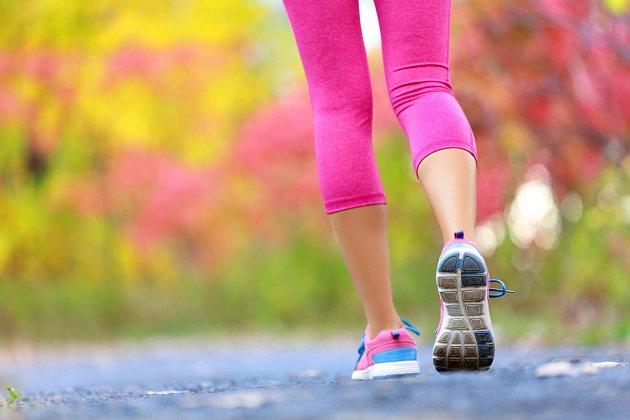 Pokud budete chodit v průměru 5 dnů v týdnu, pak za rok můžete shodit 12 kg tuku