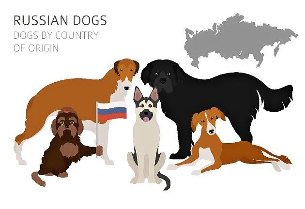 Původní ruská plemena psů