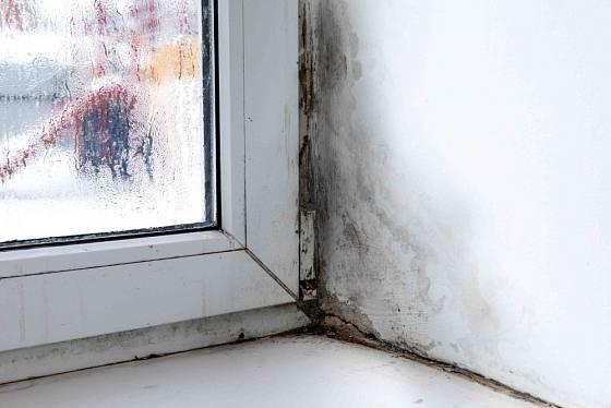Plíseň v okolí okna