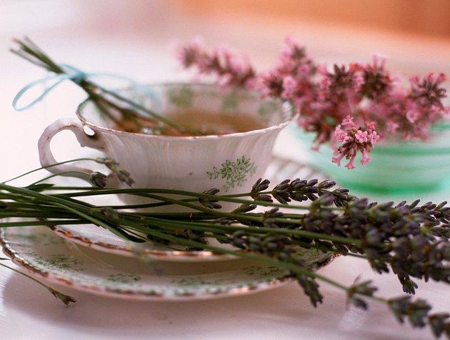 Z levandule lze připravit skvělý a účinný čaj
