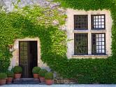 """Zelená rostlinná """"fasáda"""" absorbuje nechtěné nečistoty, produkuje kyslík a dokáže poskytnout útočiště drobnému hmyzu."""