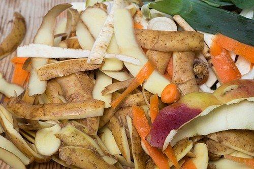 Nevyhazujte zbytečně slupky od ovoce a zeleniny či vylouhovaný čaj do popelnic.