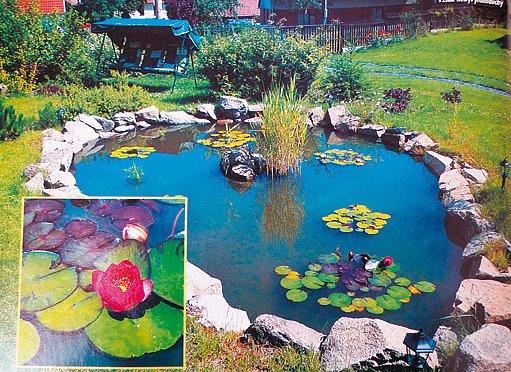 Na pozemku vzniklo i zahradní jezírko.