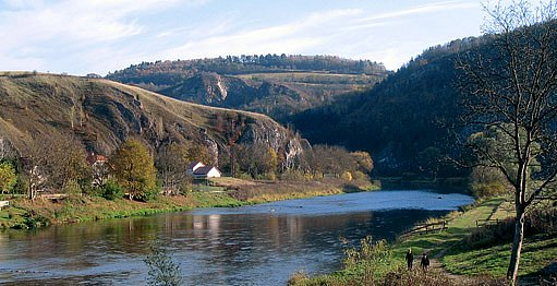 údolí berounky u Srbska