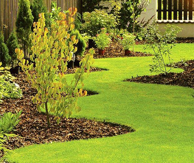 podzim je ideální pro založení trávníku