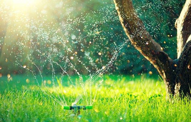 I trávník vyžaduje vparnu zvýšenou péči