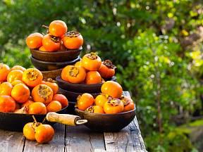 Ebenovník si můžete doma vypěstovat přímo ze semínka uvnitř plodu.