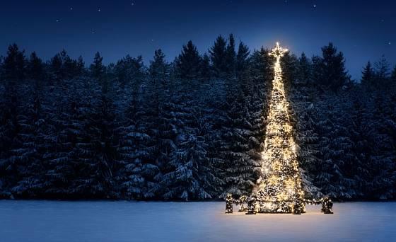 Vánoční strom v exteriéru vyžaduje speciální LED osvětlení se zabezpečeným zdrojem a ochranou.