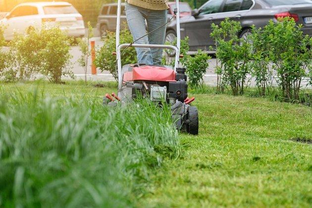 Co udělat s čerstvě posekanou trávou? Využijte ji na zahradě