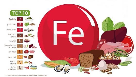 Přehled potravin s nejvyšším obsahem železa.