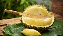 Durian vyniká lahodnou chutí a odporným zápachem
