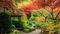 podzimní japonská zahrada dává barevným listům vyniknout