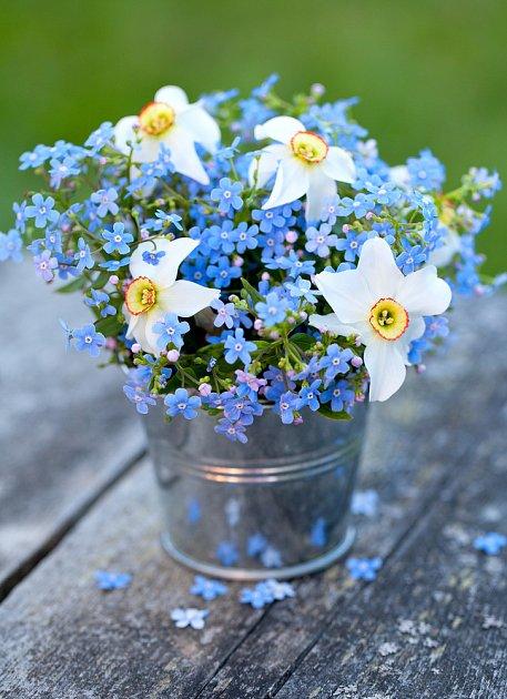 Narcisy jsou vděčné řezané květiny. Když je chvíli necháte ve vodě samotné, můžete přidat i další květiny.