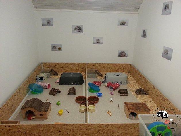 originální ježčí bydlení