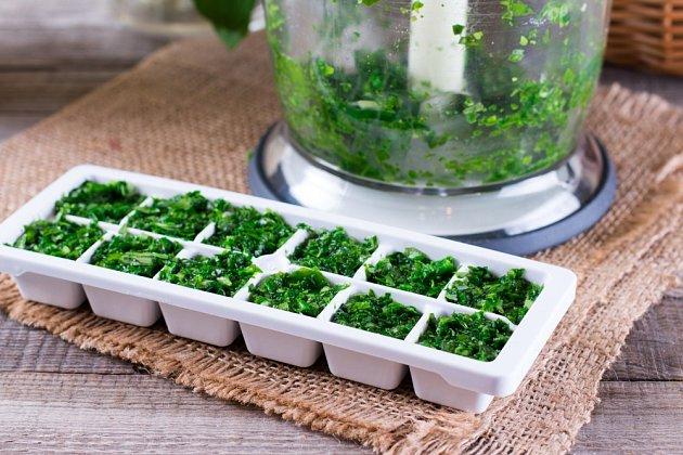 Máte bohatou úrodu bylinek, kterou byste si chtěli uchovat co nejčerstvější, ale v mrazáku už nemáte místo?