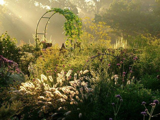 Zahrada s pestrou skladnou rostlin je po celý rok krásným útočištěm pro všechny