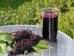 Z bezinkové šťávy můžete připravit sirup, likér, víno, nebo ji zavařit samotnou