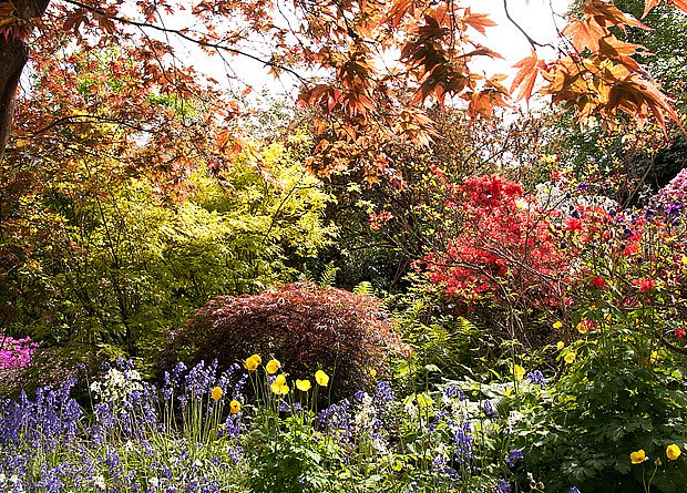 Péstrá přírodní zahrada