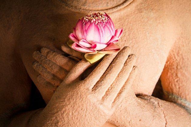 Lotos v buddhových rukou