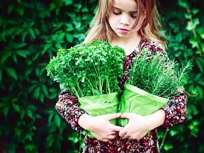 S bylinami a kořením je potřeba zacházet s mírou.