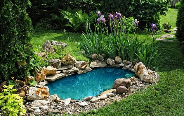 I malé zahradní jezírko může zkrášlit vaši zahradu, je však potřeba pravidelná údržba.