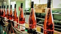 Zámecké vinařství Bzenec, sklizeň 2017
