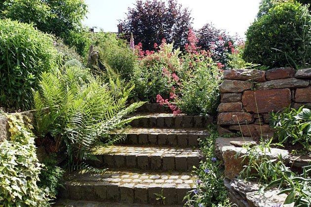 Výběr keřů do velké míry ovlivní styl zahrady a osobní vkus