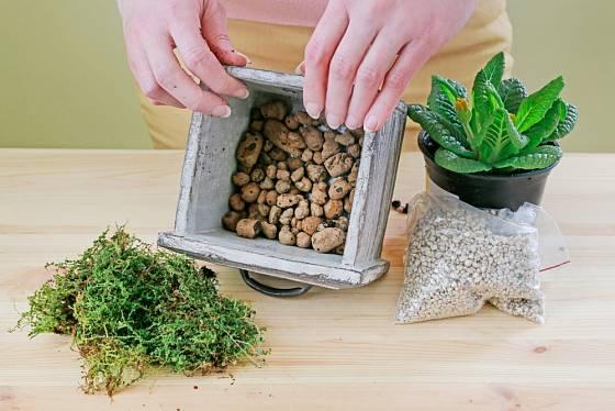 Dno nádoby vysypeme keramzitem, který zajistí dobrou drenáž.