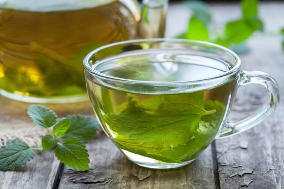 čaj si můžete připravit i z čerstvé meduňky