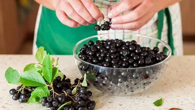 Plody černého jeřábu jsou nutričně výjimečně hodnotné.