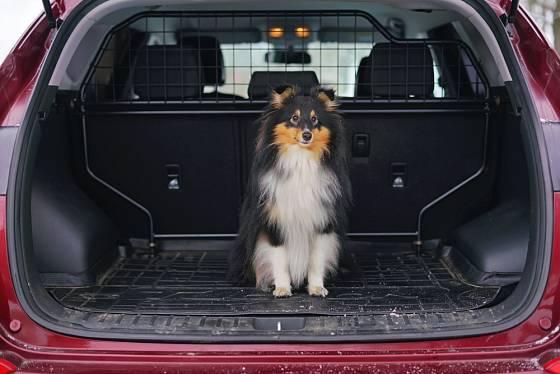 Mříž v autě je praktická pro oddělení prostoru pro psa a pro osoby na zadních sedadlech.
