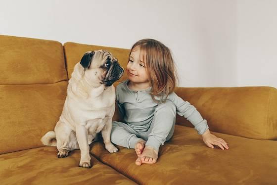 Děti milují roztomilé tváře mopsů.