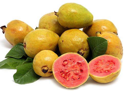 plody psidia typu guajáva