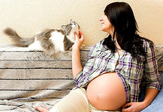 Každá žena, která hodlá otěhotnět, by měla vědět, zda má protilátky proti toxoplazmóze