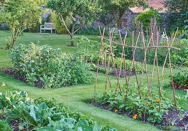 Zeleninová zahrada může plodit od jara do podzimu