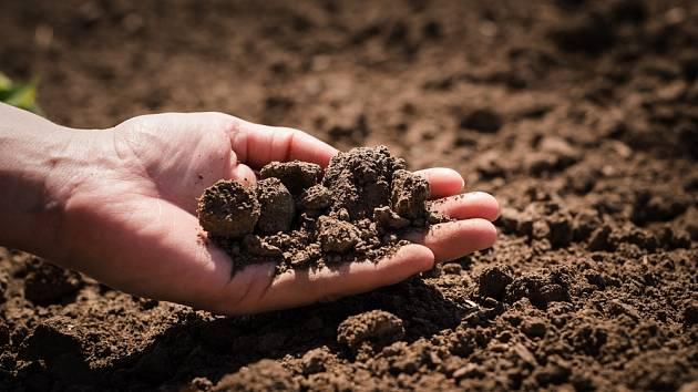 Kvalitní zemina je základ dobrého zahradničení.