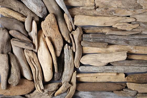 Kousky naplaveného dřeva mají rozmanitou velikost i barvu.