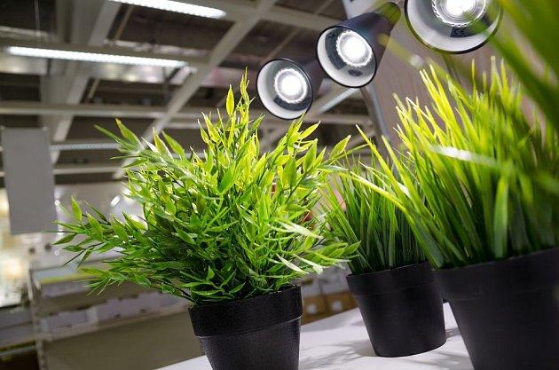Umelé osvětlení může mít různé podoby