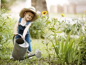 Zalévat zahradu musíte