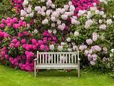 Chcete, aby vaše zahrada také tak krásně kvetla? Tomuto kouzlu dopomůže i obyčejný lógr