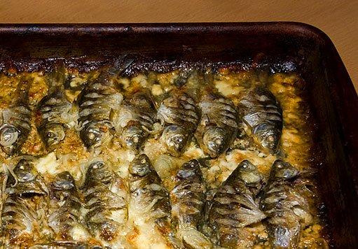 grilované rybičky