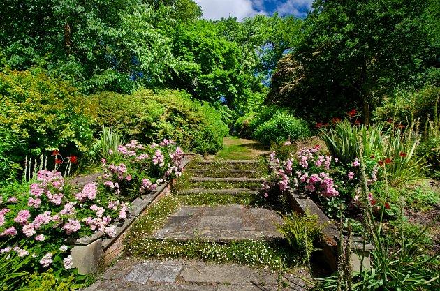 Rozkvetlá dlažba propůjčí zahradě starobylý a divoký vzhled.