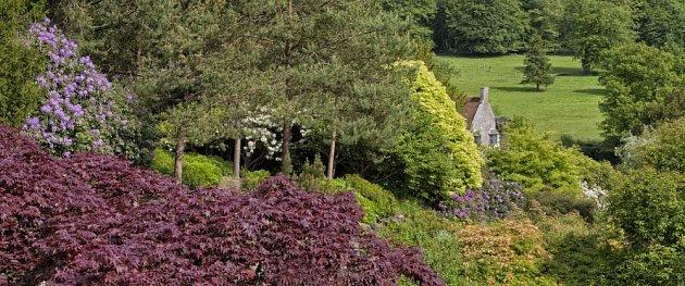 Prudké svahy zahrady zpevní dřeviny