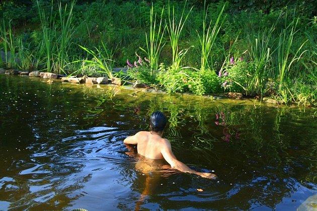 Čím větší jezírko, tím lépe - nejen kvůli plavání, ale i pro snazší dosažení přírodní rovnováhy a čisté vody