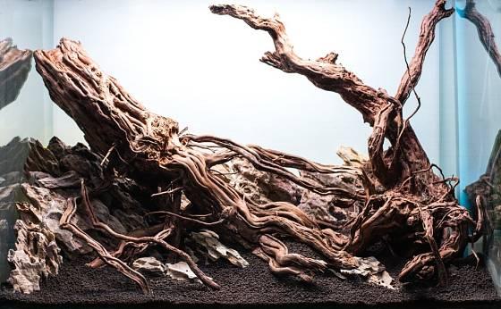 Naplavené dřevo můžeme využít i jako dekoraci v akváriu.