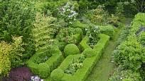 Buxus vybízí z zahradní tvorbě, mezi jedlé rostliny však rozhodně nepatří