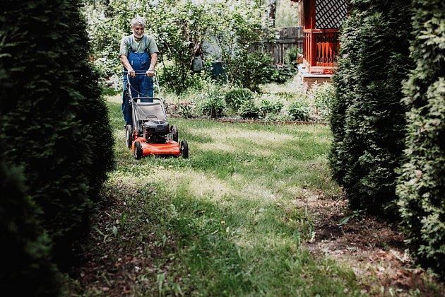 Pokud máte na zahradě keře, stromy, zeleninu, apod., můžete použít trávu jako mulč.