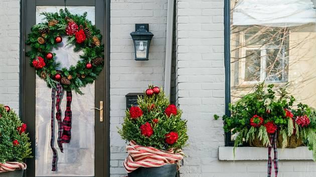 Vánočně můžeme vyzdobit i buxusy před vchodem do domu.